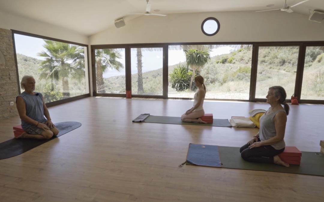 Yoga Vinyasa with Ruth McNeil