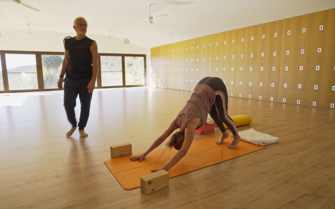 Yoga Hour for All Levels – 60'